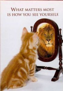 self esteem lion