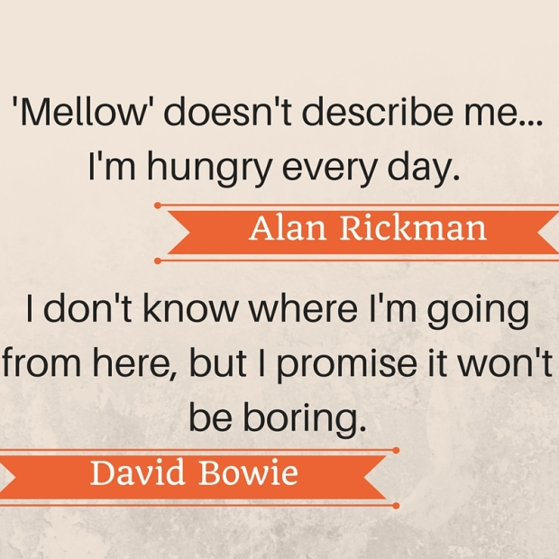 'Mellow' doesn't describe me...I'm hungry every day.