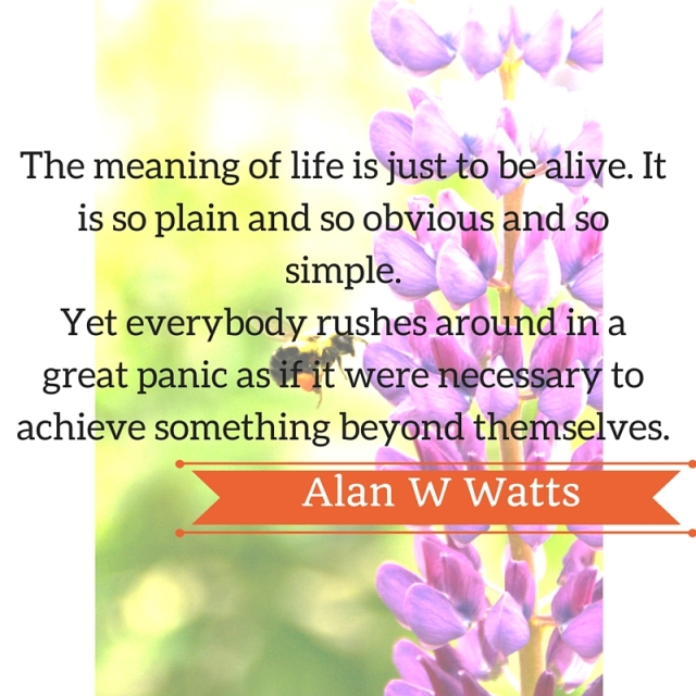 The meaning of life is just to be alive. It is so plain and so obvious and so simple.Yet everybody rushes around in a great panic as if it were necessary to achieve something beyond themselves.