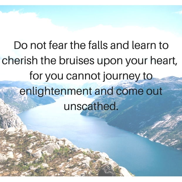 Do not fear the falls and learn to cherish the bruises upon your heart, for you cannot journey to enlightenment and come out unscathed.