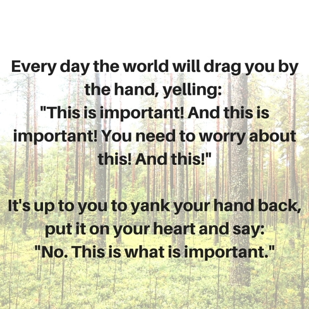 Every day the world will drag you by the hand, yelling- -This is important! And this is important! You need to worry about this! And this!-Each day, it's up to you to yank your hand back, put it on your heart and say--No. This is what is im