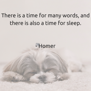 There is a time for many words, and there is also a time for sleep. Homer
